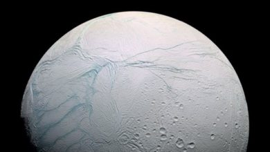 Complex Carbon-based Molecules Found In Enceladus, The Saturn Moon