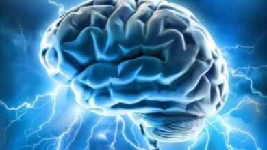Scientists Are Testing Brain-To-Brain Network To Exchange Information