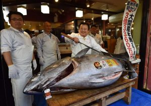Japanese Sushi Tycoon Paid $3.1m For A Bluefin Tuna