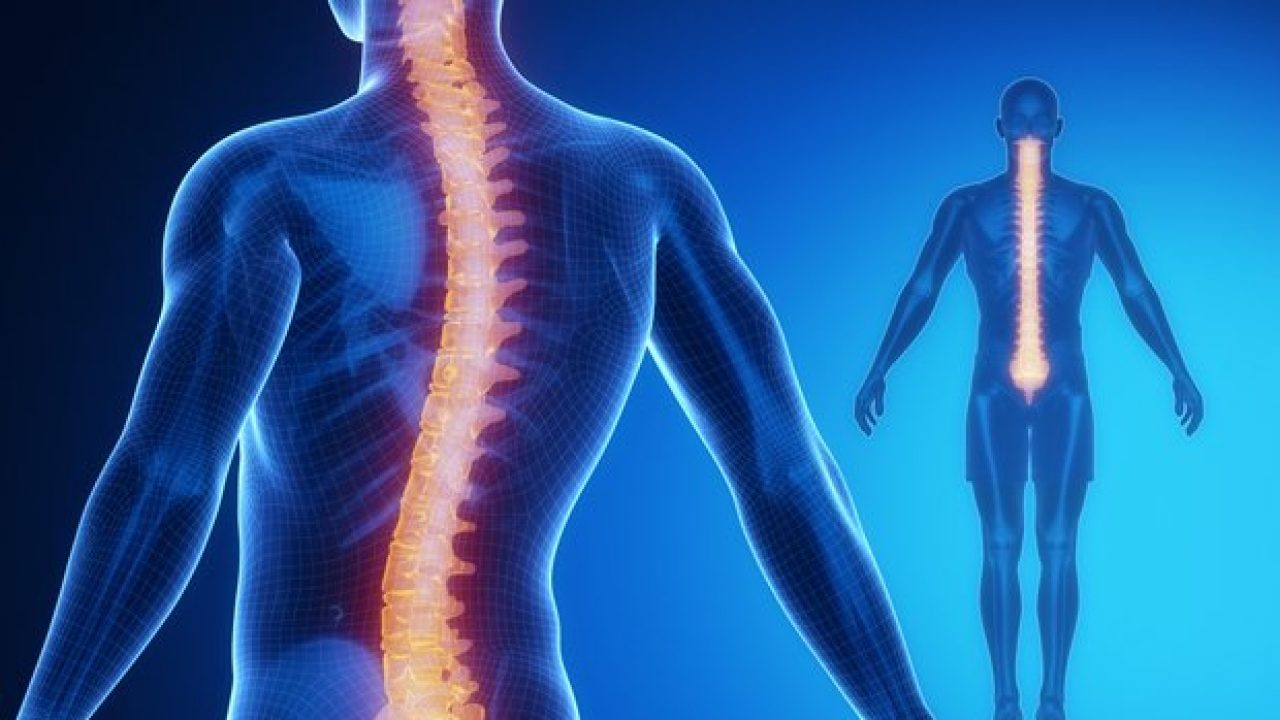 Spinal Implants And Surgical Devices Market To Develop And