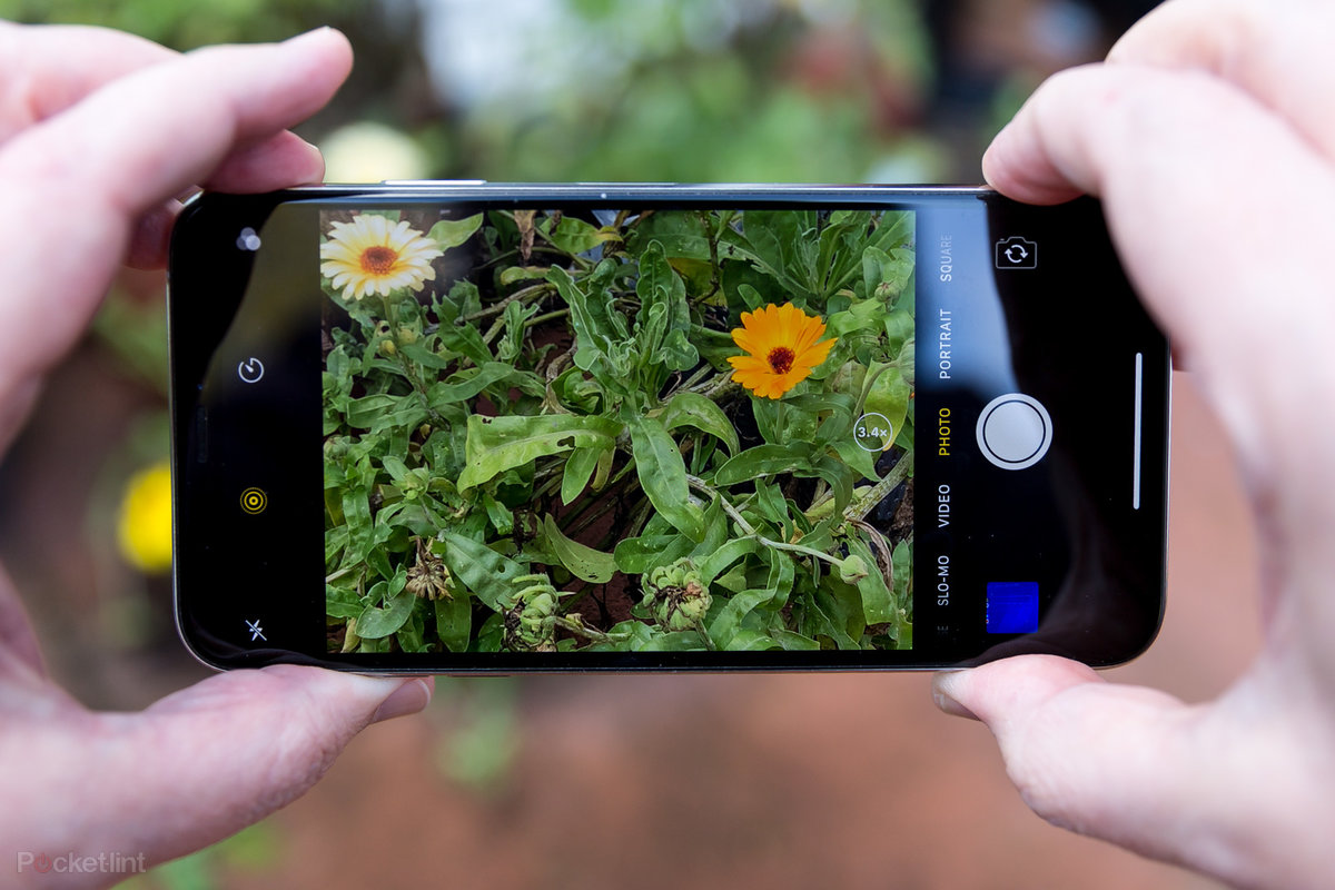 Take Perfect Photos With Your Phone